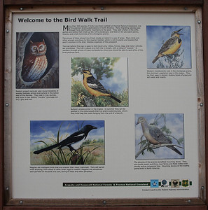 The birding trail in the campground.