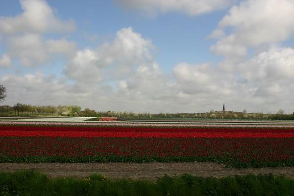 Entre Haarlem et Delft - 11
