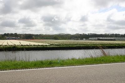 Entre Haarlem et Delft - 2