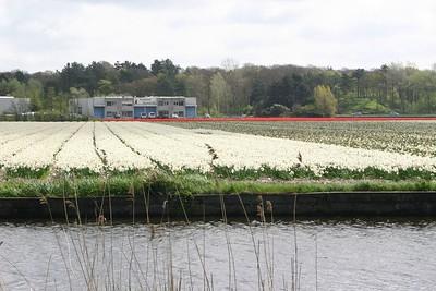 Entre Haarlem et Delft - 1
