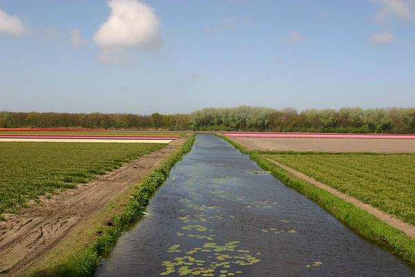 Entre Haarlem et Delft - 12