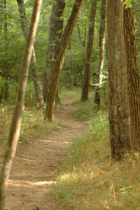 The trail to/from Johnson's Farm.