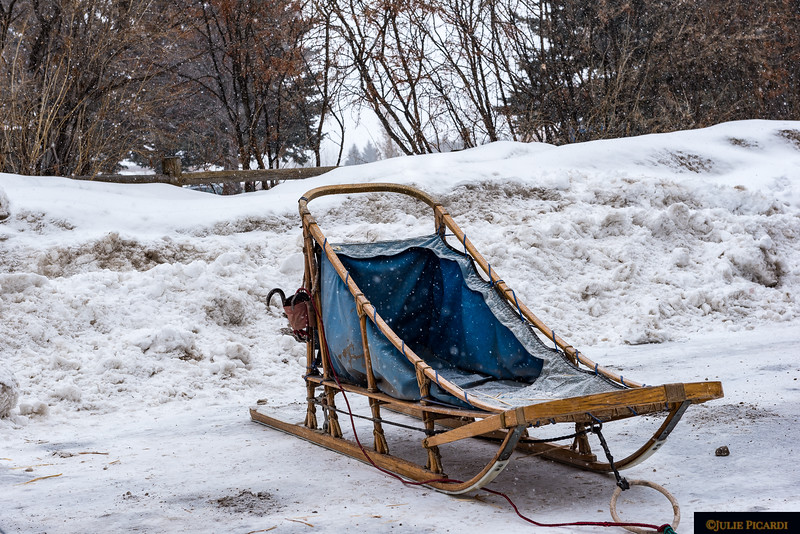 A sled stationed out of the way but near the trailer. Tonight the race begins in the town square of Jackson.