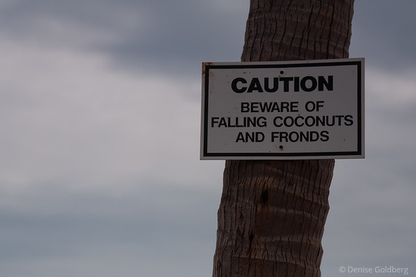 sign at Punalu'u Black Sand Beach