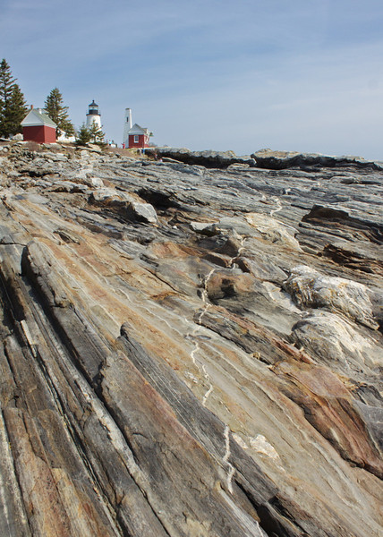 The Vein at Pemaquid Point