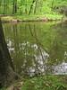 Stream at Bowman's Hill, Bucks County