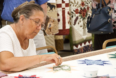 Kutztown Quilts-0232