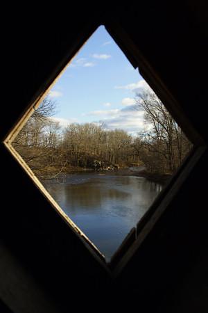 PA-Bucks-Tyler State Park