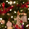 BC Christmas Trees-6958