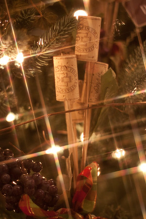 BC Christmas Trees-6952