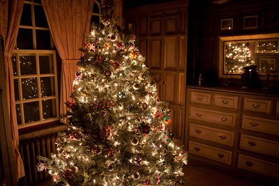One of Doylestown's three castles designed and built by Henry Mercer.  Fonthill was his residence.  Here the castle is decorated for Christmas.