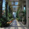 Longwood Gardens-5289
