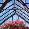 Longwood Gardens-5416