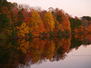Lake Nockamixon in Autumn : Lake Nockamixon is in a nearby state park. Here it is at its finest.