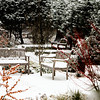 THree Snowy Benches