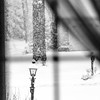 Lamp post in snow storm