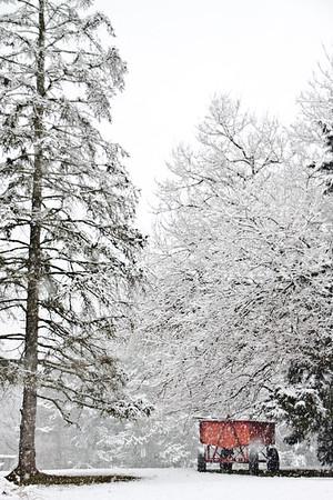 Ambler Snow-1758