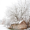Ambler Snow-1757