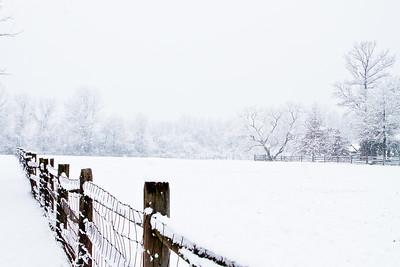 Ambler Snow-1741