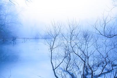 Blue Lagoon at Trewellyn Preserve