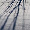Storm Jonas-7695
