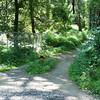 Easton Bethlehem Bike Trail-00722
