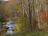 Bucolic creek in Autumn, Springtown, PA