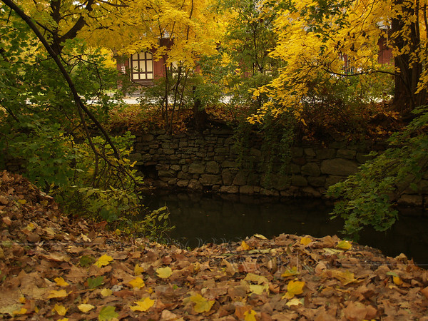 Old Bethlehem Train Station, through leaves at Moravian College