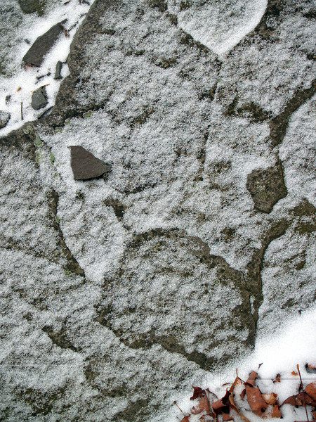 """Animal Face"" created by light snowfall on rock, Pocono Mts., Pennsylvania"