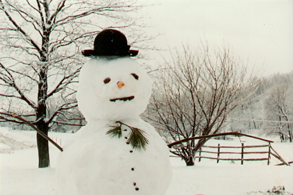 Backyard snowman in Steinsburg, PA