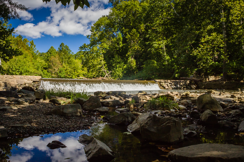 Pennypack Park-9999