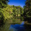 Pennypack Park-9964