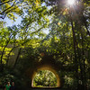Pennypack Park-9980
