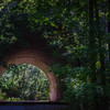 Pennypack Park-9982