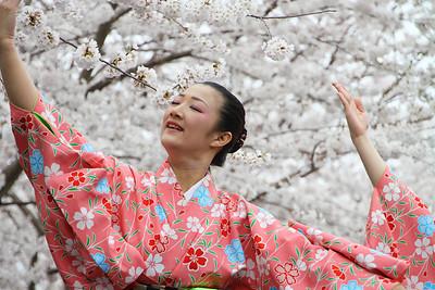 PA-Phila-Cherry Blossom Festival