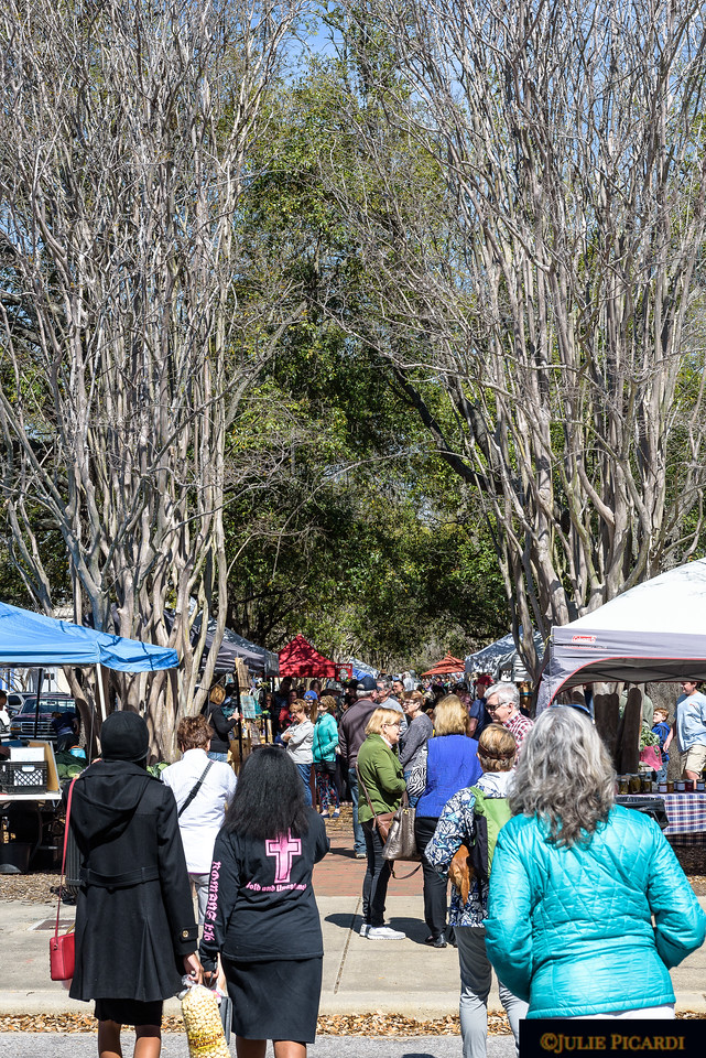 Located between Chase and Wright Street, vendor tents are set up in the median of Palafox Street.