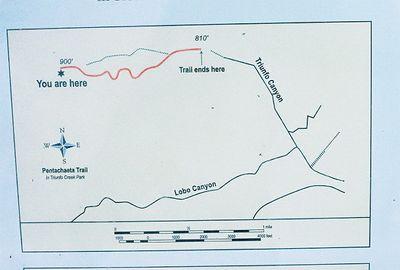 5/7/05 Pentachaeta Trail, Triunfo Creek Park, Westlake Village, Los Angeles County, CA