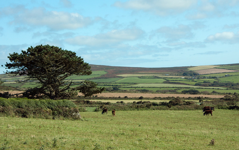 The Cornish countryside near Land's End