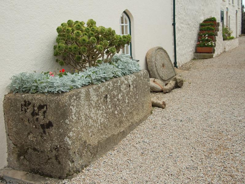 Little gardens on St. Michael's Mount
