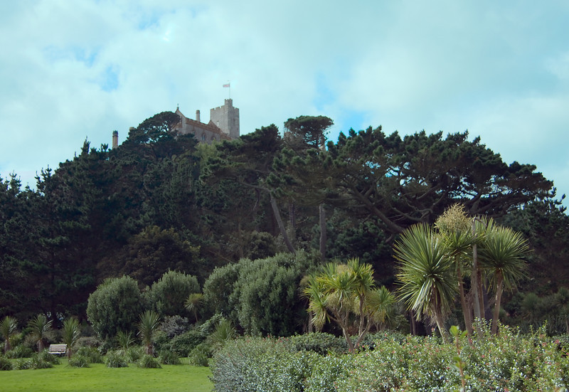 Tropical plants and the castle on St. Michael's Mount