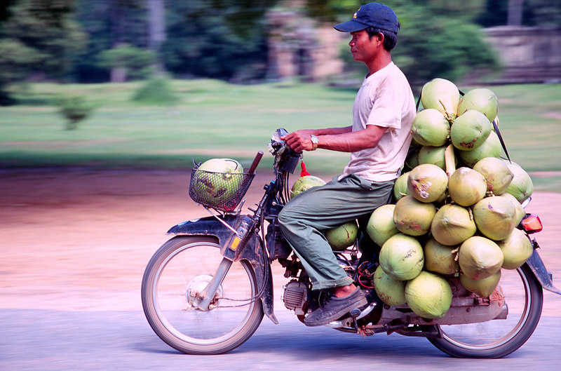 Transporting Coconuts, Siem Reap<br /> (Cambodia, 2004)