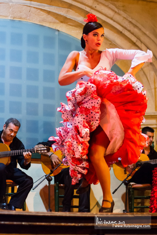 ballet flamenco de concha calero