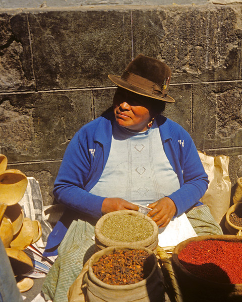 Lady selling spices in La Paz  Bolivia