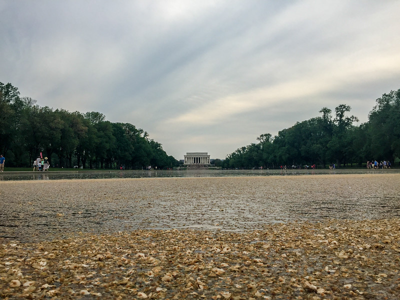 Lincoln Memorial Reflecting Pool, Washington DC.