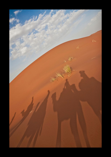 shot from Camel ride to camp in the Sahara