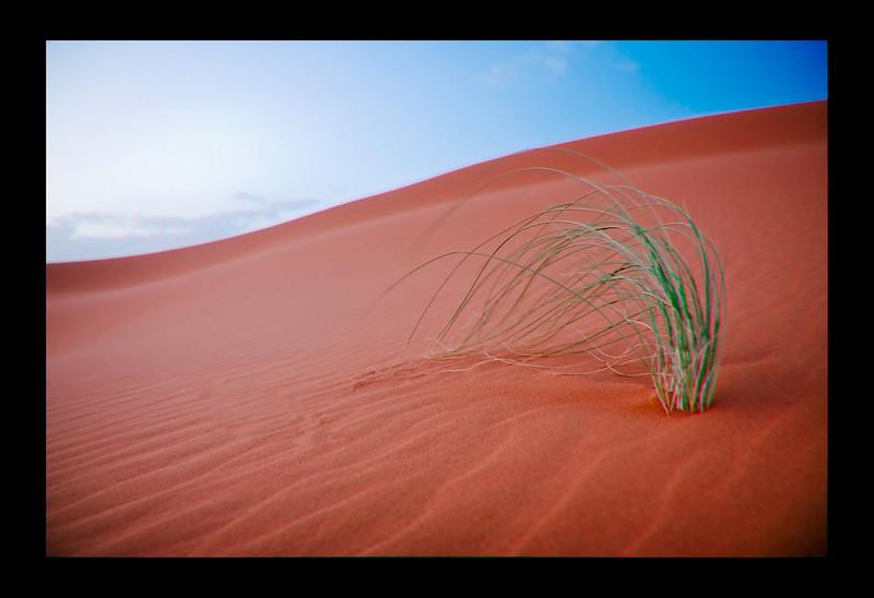 Erg Chebbi dunes, Sahara