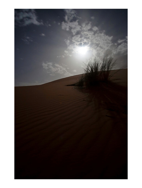 Moonlight at Erg Chebbi dunes, Sahara