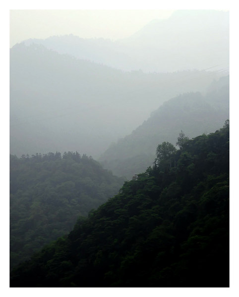 """Layers of Nature"", hazy style, near Mt. Emai, China."
