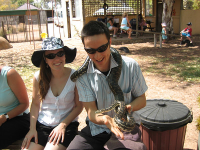python tamer tobs