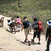 traffic jam on the Inca Trail